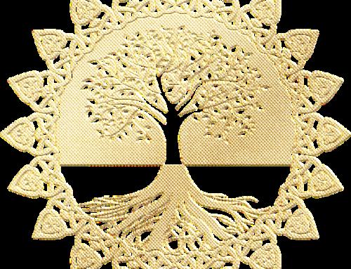 L'arbre généalogique et l'histoire de Patrick